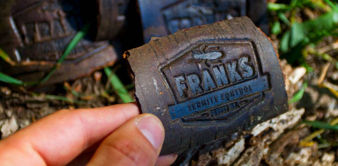 Creative business cards made from a bark of a tree
