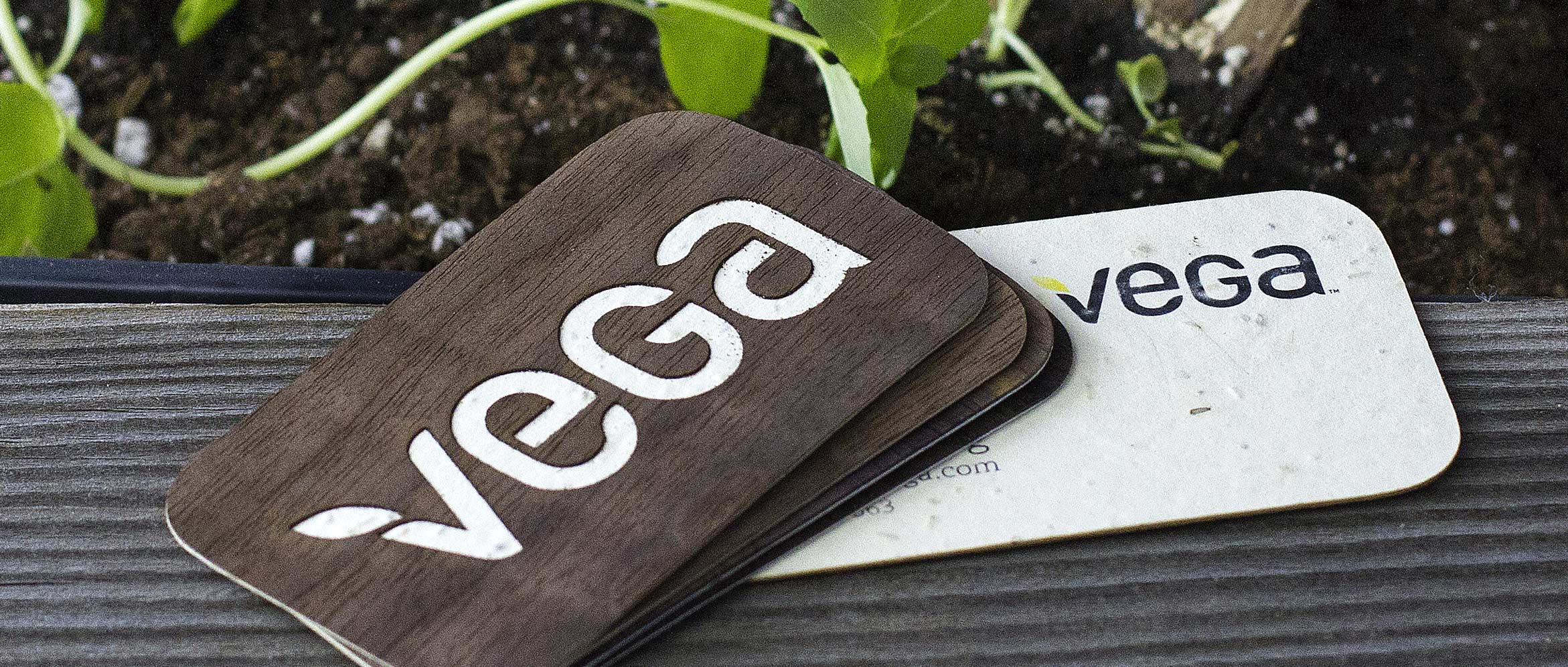 Vega Seeded Business Cards | Jukebox Print